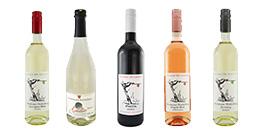 Weinbau_Gruppe_Startseite